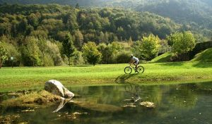 Mountain bike in Valle delle Chiese